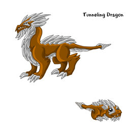 Tunneling Dragon
