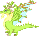 SpringSeasonalDragonAdult