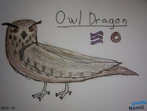 OwlDragon NemiS