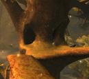 Elfenbaum