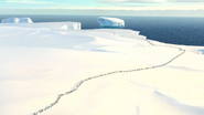 Penguins of Madagascar - Penguin colony view