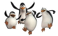 600--pinguins