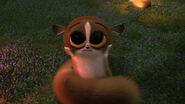 Madagascar mort hold me
