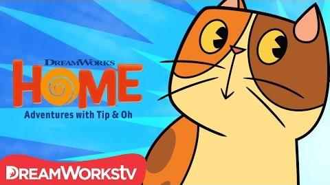 A Cat Named Pig DreamWorks Home Adventures With Tip & Oh