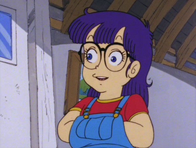 File:Akane Arale Disguise.png