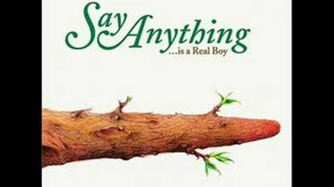 Say Anything - Spider Song