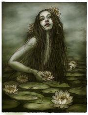 Bog temptress