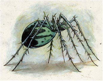File:Jade Spider by Vince Locke.jpg
