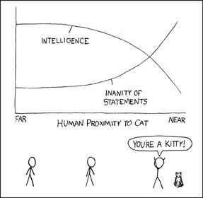 Cat proximity