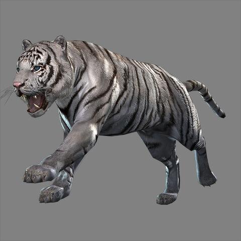 File:White Tiger (DW8 DLC).jpg