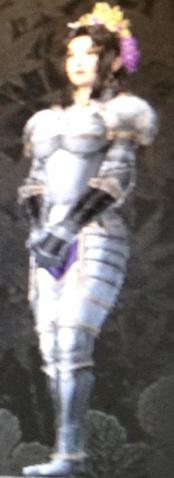 File:Fern Armor (Kessen III).png