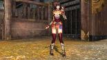 Naotora Ii Weapon Skin (SW4 DLC)