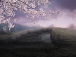 Shizugatake (Warriors Orochi)