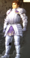 Foreign Armor (Kessen III)