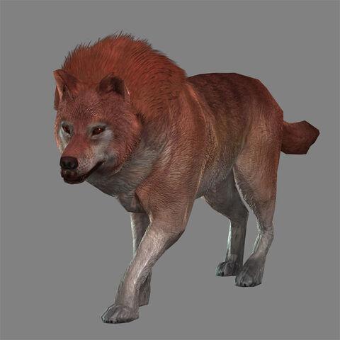 File:Fire Wolf (DW8 DLC).jpg
