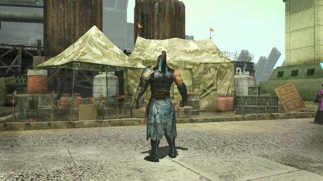 File:Commander Base Theme 4 (DW8 DLC).jpg