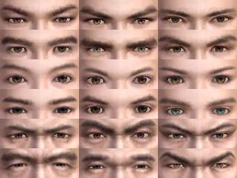 File:Male Eyes (DWN).png