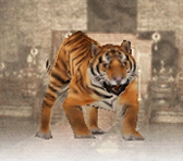 File:Tiger (DW7).png