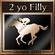 Champion Jockey Trophy 21
