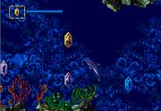 Aqua maze sce