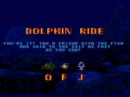 14 - dolphin ride