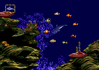 Dolphin ride screen