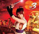 Lady Ninja Kasumi, Volume 3: Secret Skills