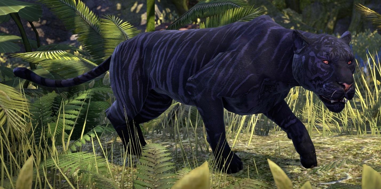 Striped Senche-Panther | Elder Scrolls | Fandom powered by Wikia