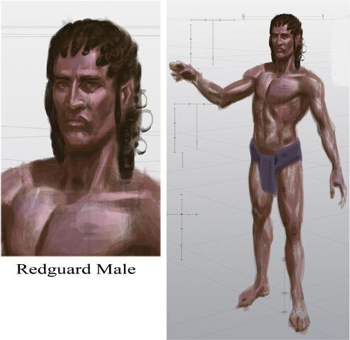 File:Redguard Male.jpg