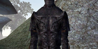 Dark Brotherhood Assassin (Morrowind)