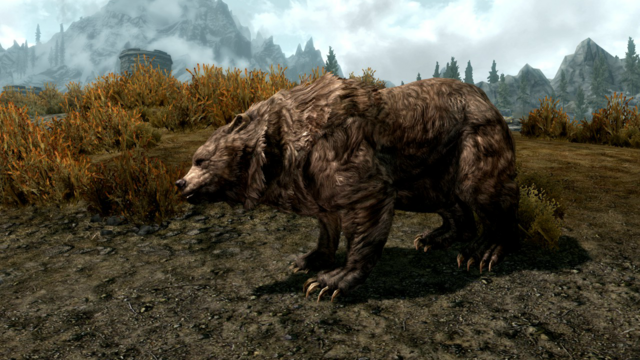 Fichier:Cave bear.png