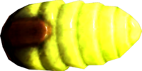 Torchbug Thorax (Skyrim)