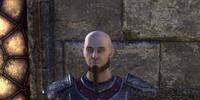 Bald Holgrim