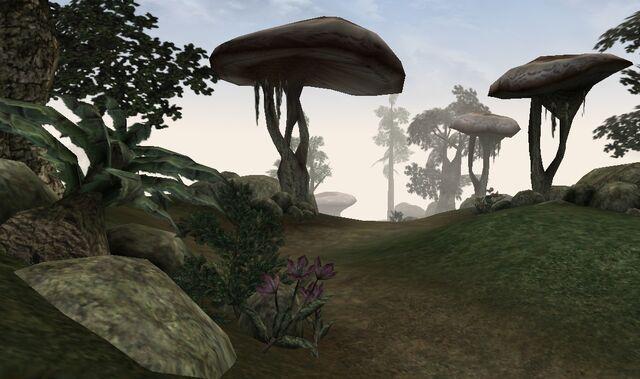 File:Ascadian Isles.jpg