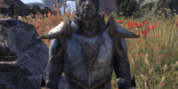 Sergeant Ren