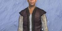 Bruscius Longus