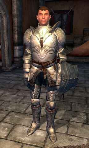 File:Fighters Guild Porter Leyawiin.png