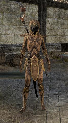 File:Phaer Mercenary Disguise Female.png