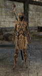 Phaer Mercenary Disguise Female