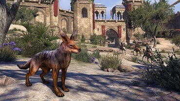File:Jackal Pet.png