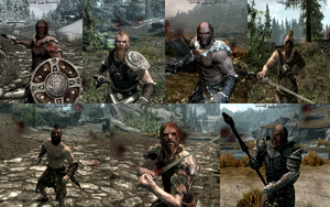 how to give your follower armour and weapons skyrim