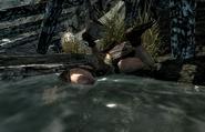 Lucky Lorenz Corpse