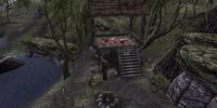Blood Island Camp