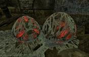 Spider Pods