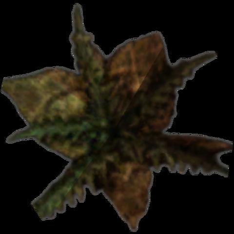 File:Morrowind Bittergreen Petals.png