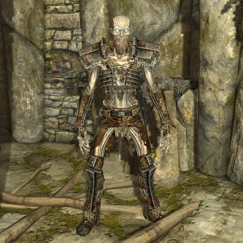 Fichier:Draugr Scourge.png