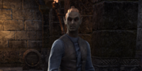 Caretaker Arethan