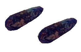 File:Lesser Soul Gem (Morrowind).png