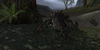 Hunting the Troll