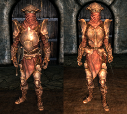 Heavy Chitin Armor - Both